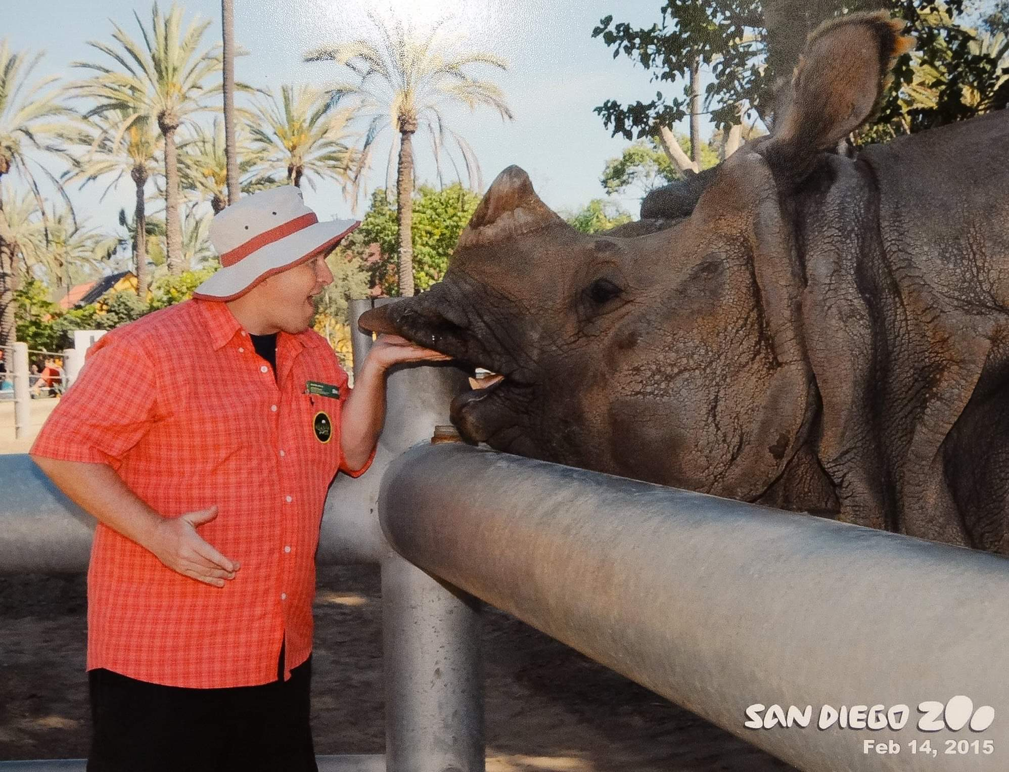 San Diego, USA. Up, close and personal with a huge Rhino